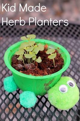 Turtle herb planter