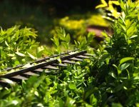 Best Corded Hedge Trimmer [2021 Review]