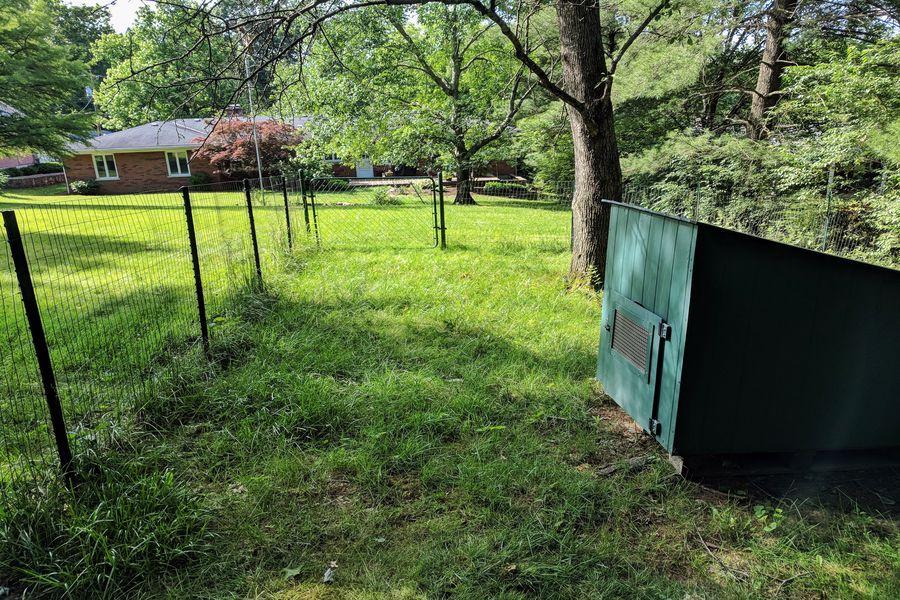 Backyard with fence
